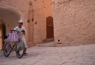 argelia-02