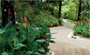 La Reserva landscaping - Costa Rica properties for sale