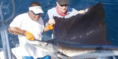 2 men holding a sailfish