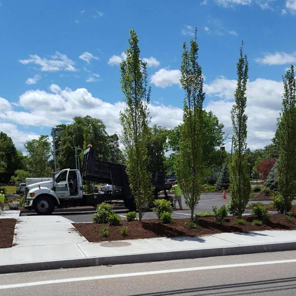 Plainville Landscape Design
