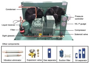 bitzer two stages blast freezer, condensing unit low temp