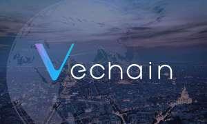 شرح مبسط لما هي VeChain وكيف تعمل