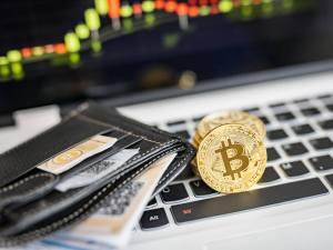 أفضل خمس محافظ آمانا لتخزين البيتكوين Bitcoin و البيتكوين كاش Bitcoin Cash