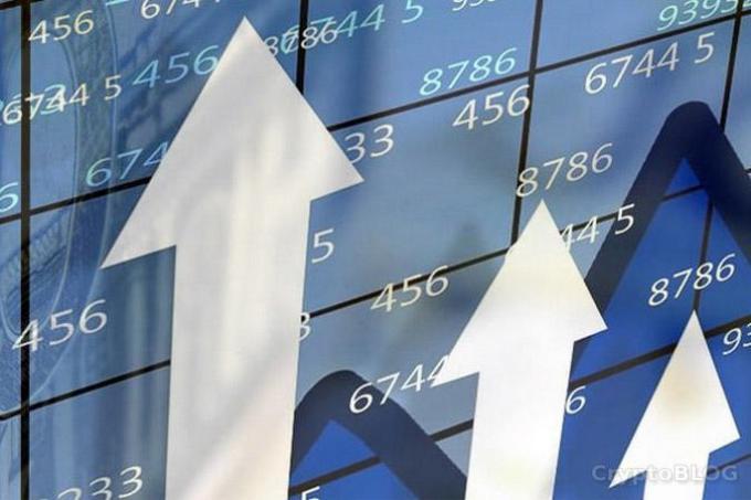 В Беларуси отмечают стремительный темп роста числа криптокомпаний