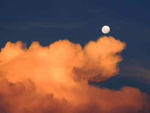 Luno Trade