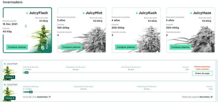 juicyfields is reliable