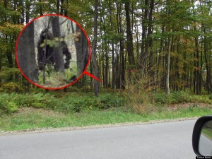 Bigfoot Spotted In Pennsylvania