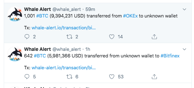 Bitcoin price prediction - Whale Alert - 5 november 2019