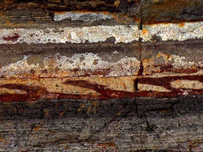 Mining Zebra Stone
