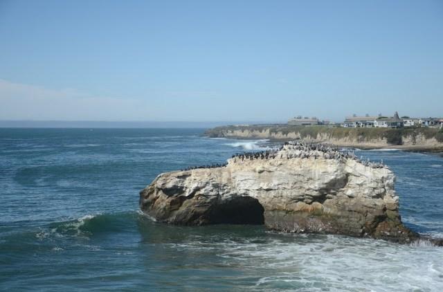 On the road- Santa Cruz