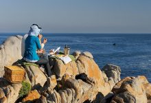 Whale watching with picnic at Grootbos