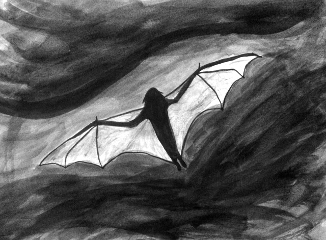 Bat in Gray Sky by Mark Bray October 15 2014
