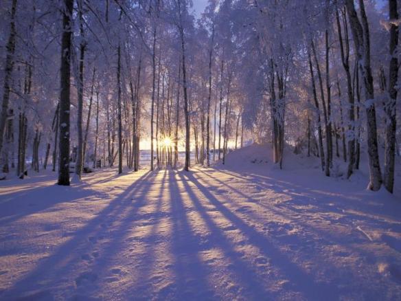 https://www.crystalheartpsychics.com/wp-content/uploads/2019/12/winter-solstice.jpg
