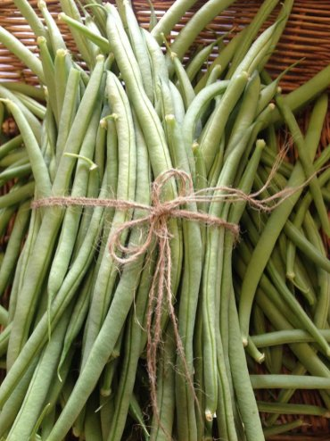 Wild Country Organics: New season french beans