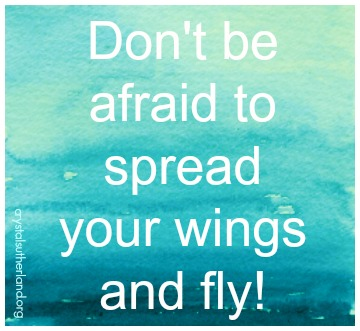 Don't Be Afraid 2 Fly