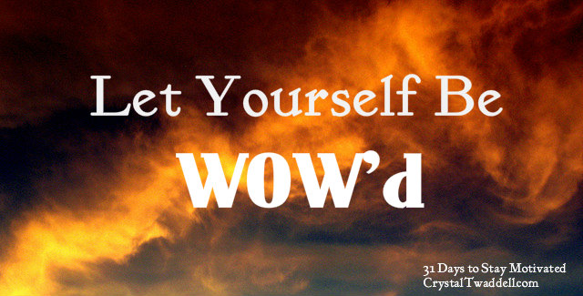 Let yourself be wowed!