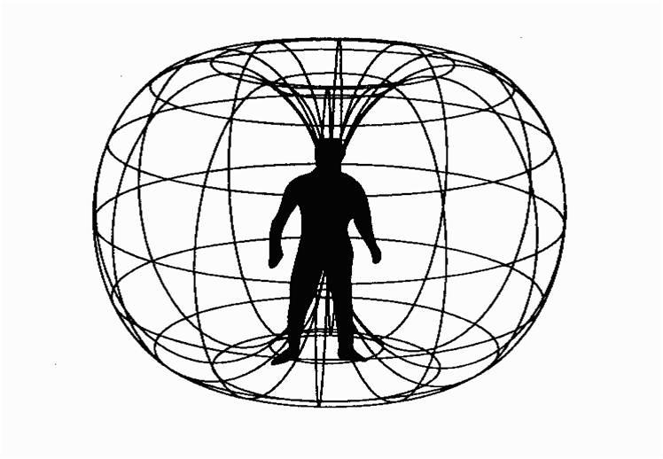Extension of Spirit-body Field