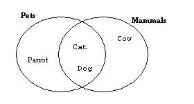 Which Statement Can You Conclude From The Euler Diagram
