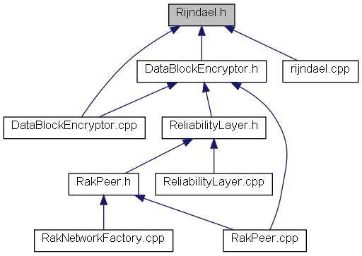RakNet: Rijndael.h File Reference