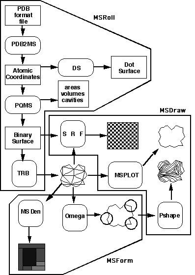 MSP Implementation Manual