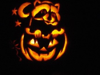 Halloween's lit and carved Raccoon atop Jack'O'Lantern