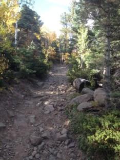 rocky pathway