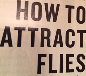 "Headline in big, black letters says: ""How To Attract Flies."""