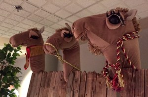 Three puppet camels