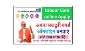 labor-card