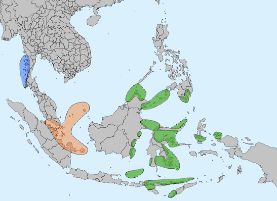 "Distribution of three different peoples referred to generally as ""Sea Nomads"" Blue: Moken, Orange: Orang Laut, Green: Sama-Bajau. Blue - West coast of lower Myanmar; orange - the coasts between Malaysia and Indonesia; green - various coasts between East Indonesia and the Southern Philippines."