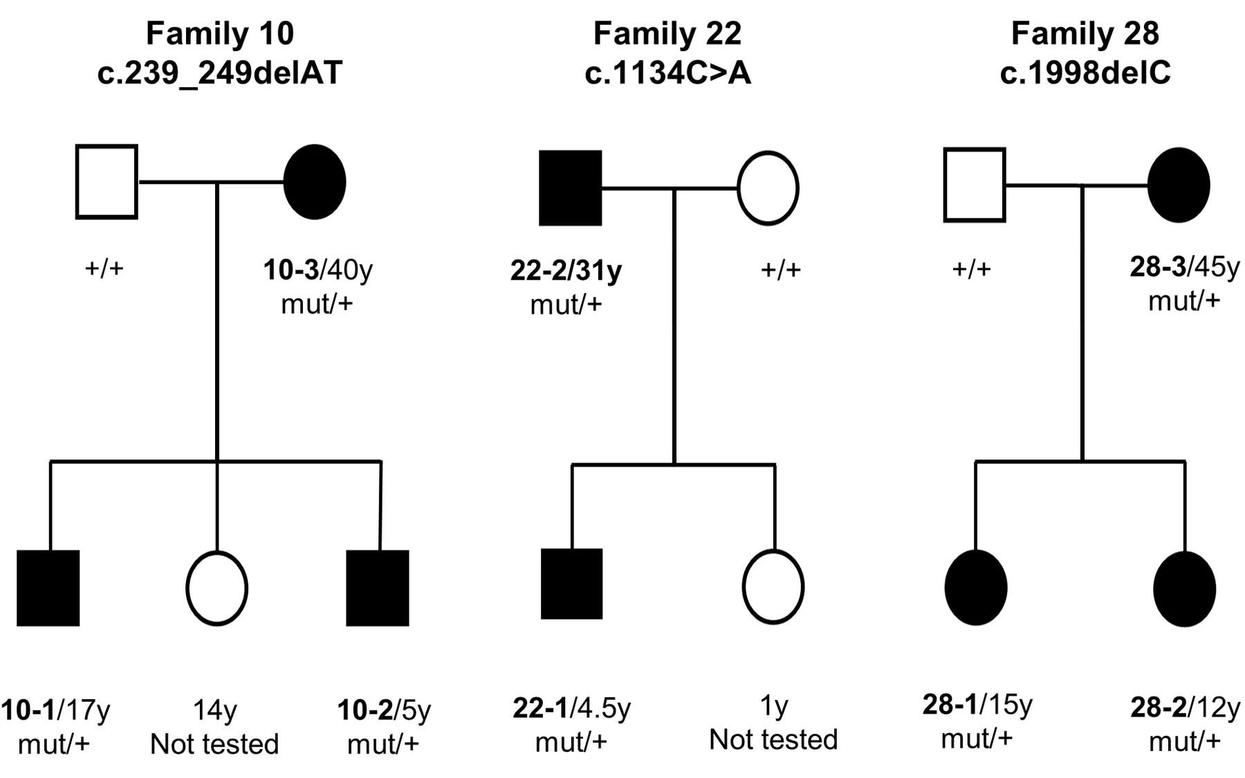 Newly Identified Genetic Mutation Results In Intellectual