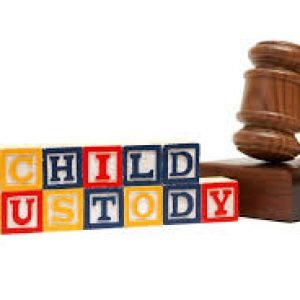 Child Custody and Child Support Investigations