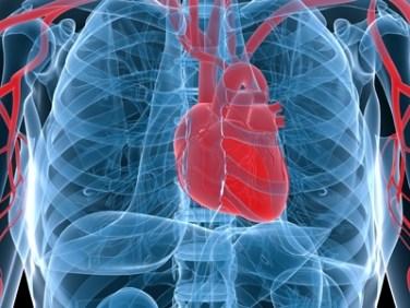 Csikung-vilaga-szivbetegseg-infarktus-vernyomas