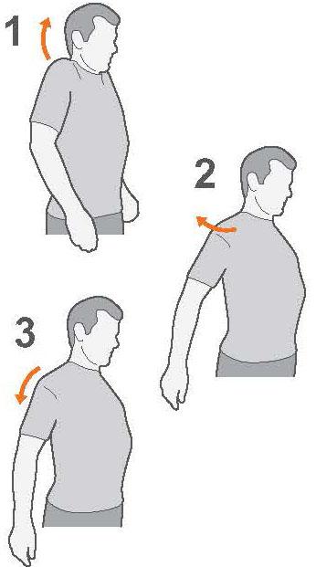 exercise advice shoulder pain