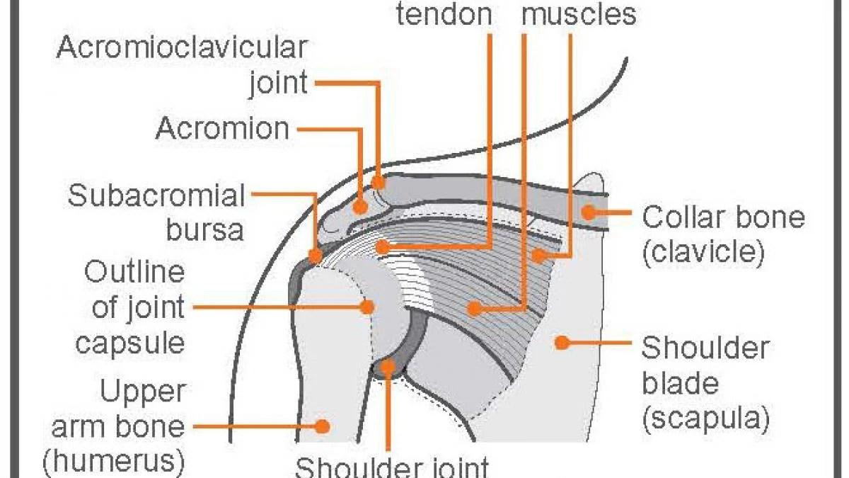 exercise advice shoulder pain [ 1200 x 675 Pixel ]