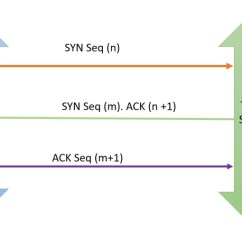 Tcp Three Way Handshake Diagram Fight Or Flight Stress Response What Is Syn Ack Packets