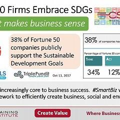 Fortune 50 firms embrace SDGs