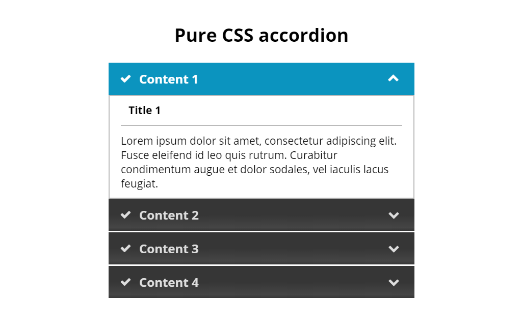 Simple CSS Accordion with Animation and Check Boxes