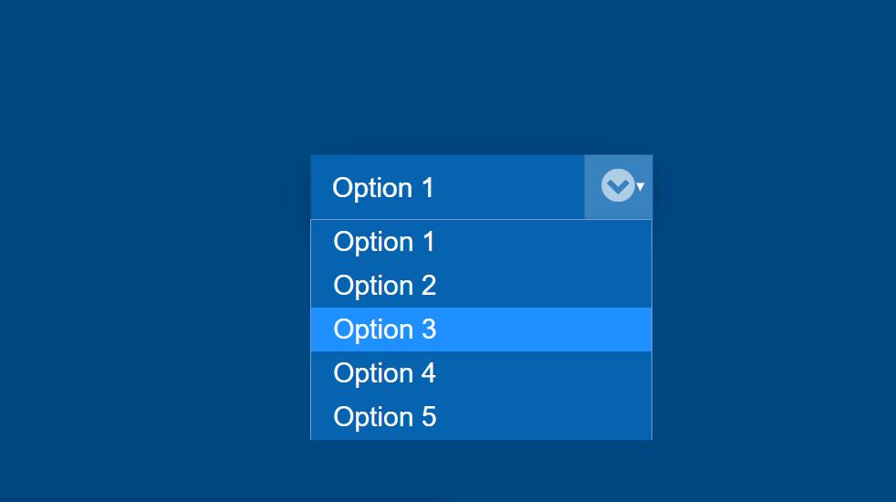Pure CSS Custom Select Box Dropdown Styling