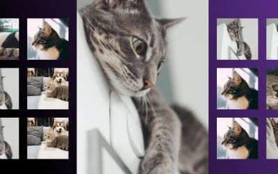 Responsive Photo Gallery with CSS Grid System