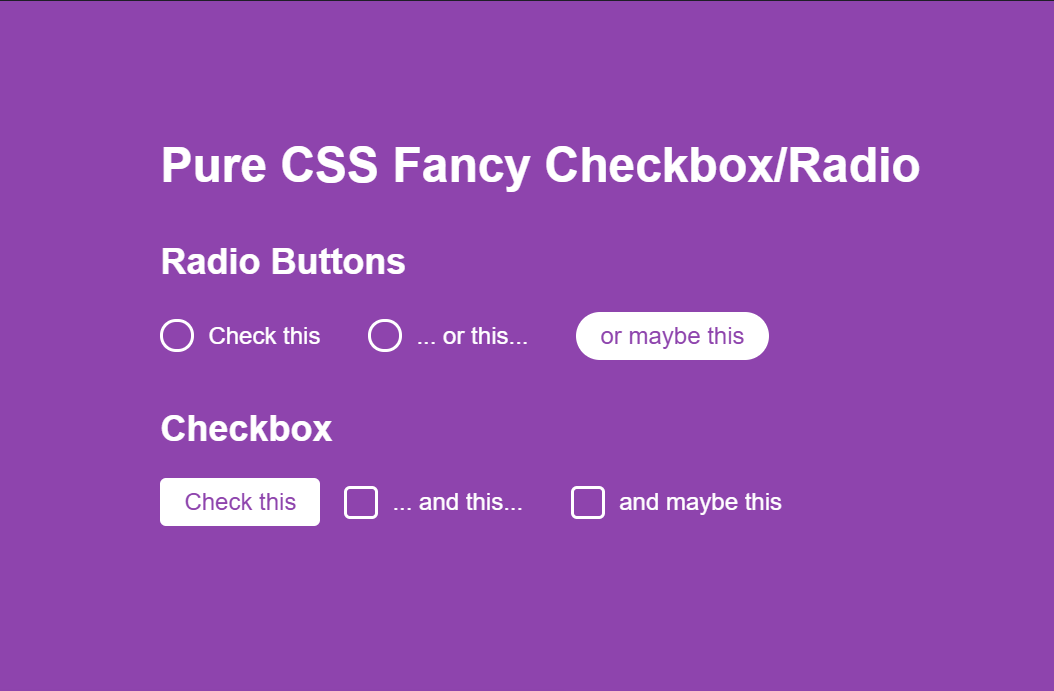 Pure CSS Fancy Checkbox And Radio Button