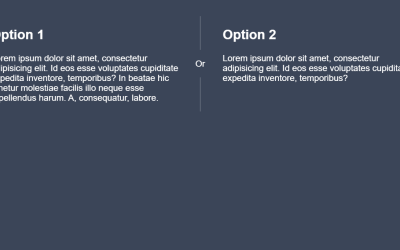 HTML CSS Vertical Divider Line Example