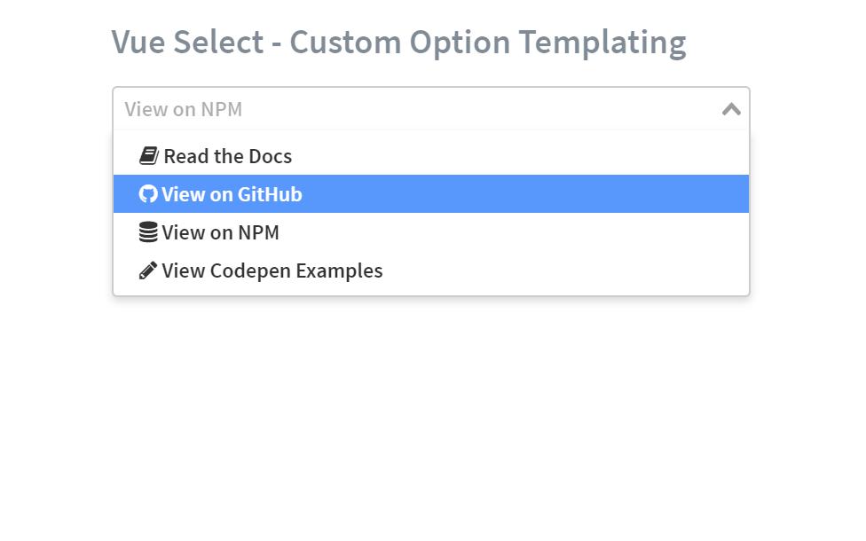 Vue Select Options Custom List