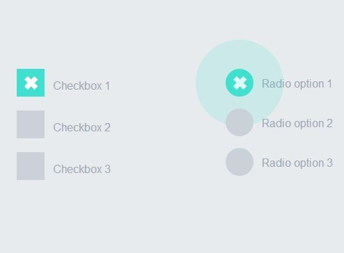 Material Design Inspired Check & Radio Click Effects with CSS3