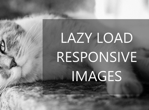 Responsive Image Lazy Load JavaScript Library – responsivelyLazy