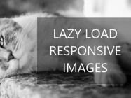 responsivelyLazy