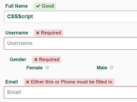 Simple Custom Form Validation JavaScript Library – JSFormValidation