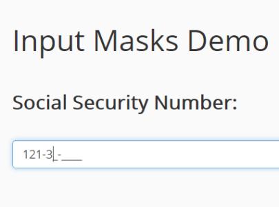 Minimalist Input Mask Library – Input Masks
