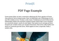 Print.js