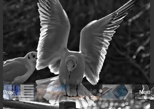 Pure JavaScript Fullscreen Image Gallery With Thumbnail Navigation